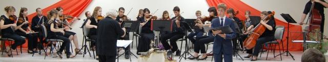Thorsten Hofbauer beim Konzert